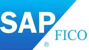 Things to Note When Answering SAP C_TFIN52_67 Exam Questions