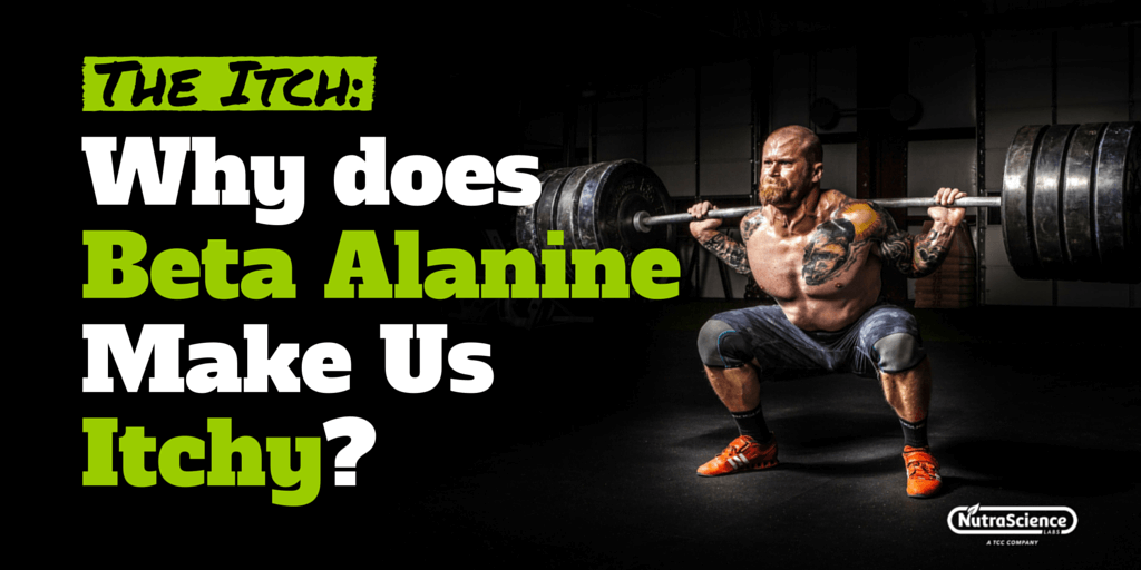 what reason Does Beta-Alanine Make Us itch?